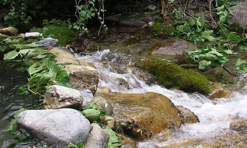 levensinspiratie-stromend-water1